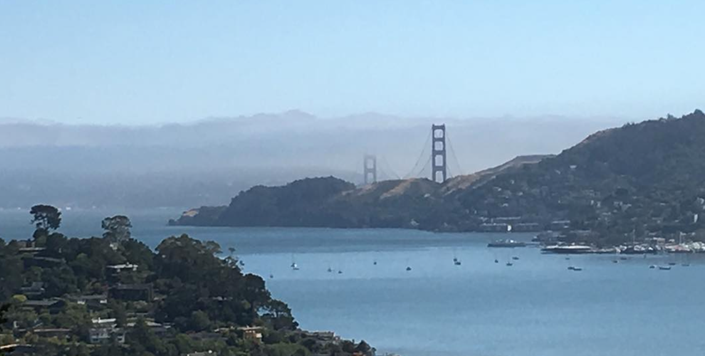 pax-tandon-los-angeles-california-san-francisco-bridge